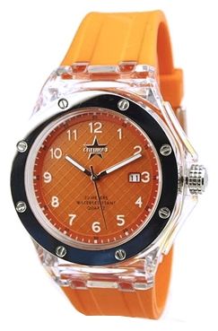 Wrist unisex watch Specnaz S2728286-32-08 - picture, photo, image