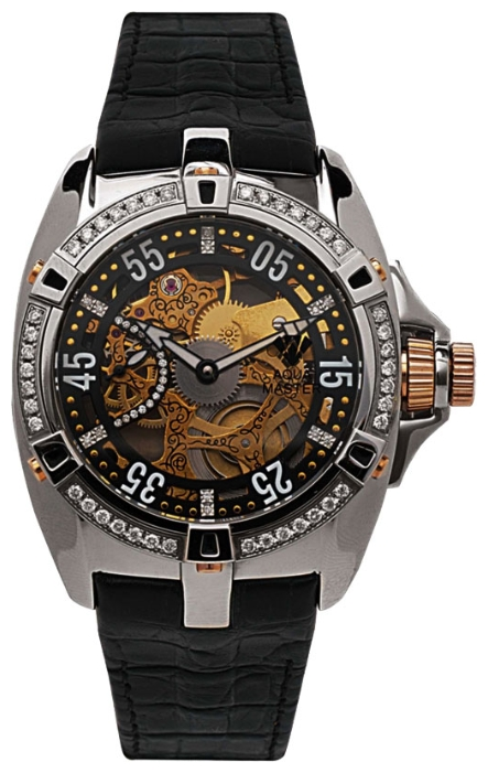 Wrist watch Aqua Master w202 for Men - picture, photo, image