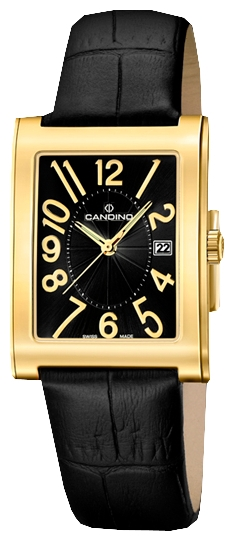Wrist unisex watch Candino C4461 2 - picture, photo, image