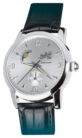 Wrist watch DuBois DuB-63016 for men - picture, photo, image