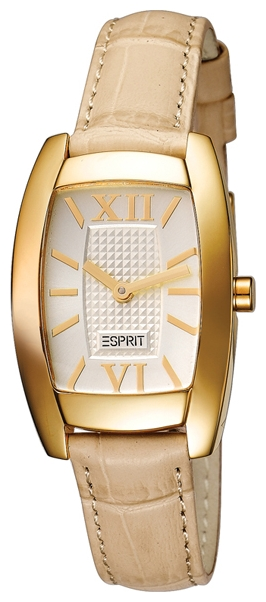 Wrist watch Esprit ES103282003 for women - picture, photo, image