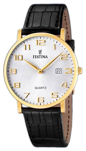 Wrist watch Festina F16478/2 for Men - picture, photo, image