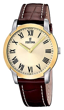 Wrist watch Festina F16508/4 for Men - picture, photo, image
