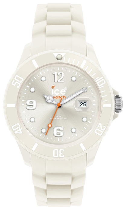 Wrist unisex watch Ice-Watch CT.WC.B.S.10 - picture, photo, image