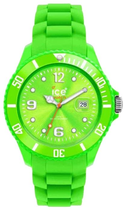 Wrist unisex watch Ice-Watch SI.GN.U.S.09 - picture, photo, image