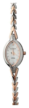 Wrist watch Nexxen NE5507CL RC/SIL for women - picture, photo, image