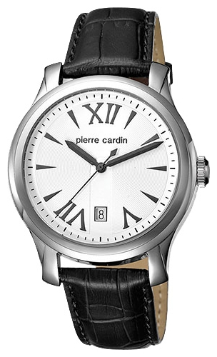 Wrist watch Pierre Cardin PC104121F01 for Men - picture, photo, image