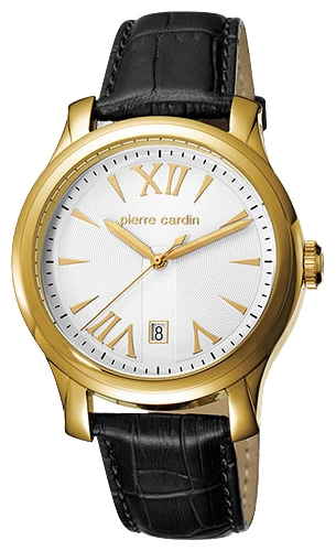 Wrist watch Pierre Cardin PC104121F03 for Men - picture, photo, image