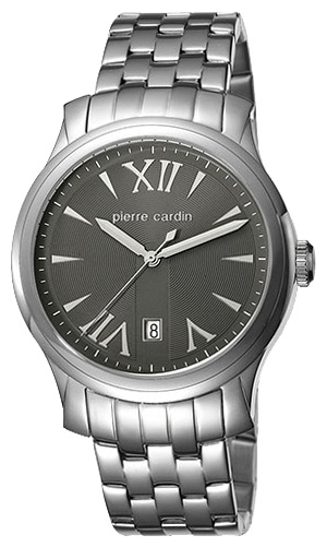Wrist watch Pierre Cardin PC104121F06 for Men - picture, photo, image