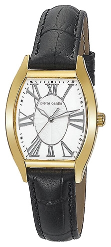 Wrist watch Pierre Cardin PC104552F05 for women - picture, photo, image