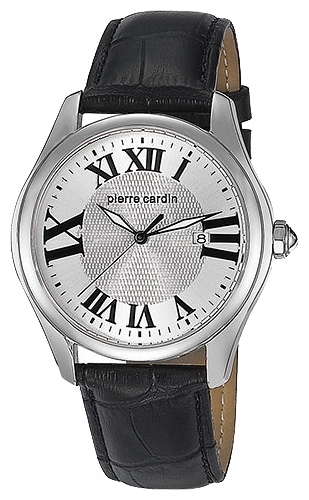 Wrist watch Pierre Cardin PC104571F04 for Men - picture, photo, image