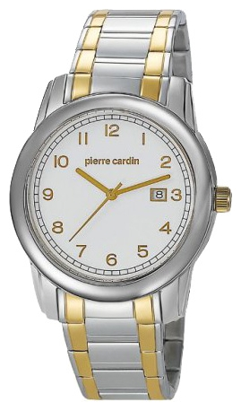 Wrist watch Pierre Cardin PC104751F03 for Men - picture, photo, image