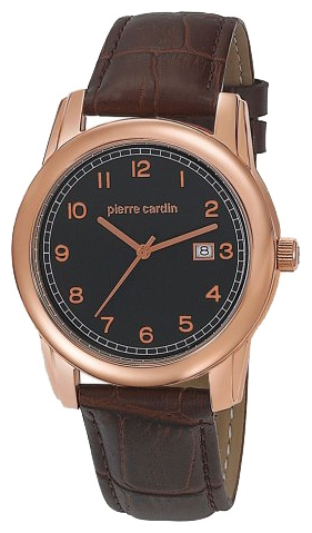 Wrist watch Pierre Cardin PC104751F04 for Men - picture, photo, image
