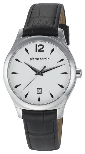 Wrist watch Pierre Cardin PC104771F01 for Men - picture, photo, image