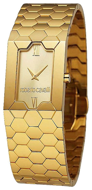 Wrist watch Roberto Cavalli 7253 139 565 for women - picture, photo, image