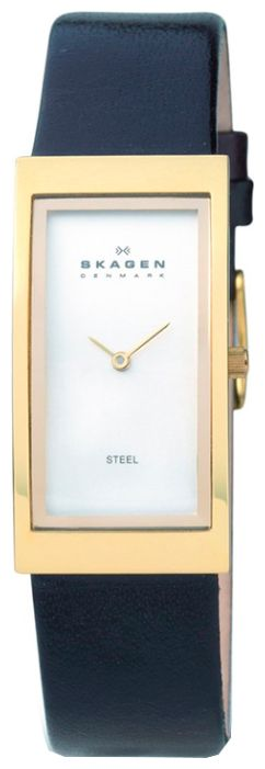 Wrist unisex watch Skagen 359USLC - picture, photo, image