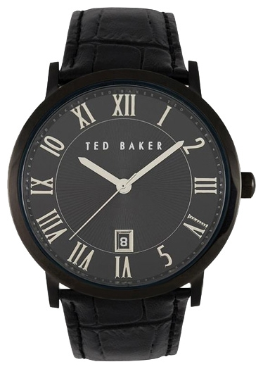 Wrist watch Ted Baker ITE1043 for Men - picture, photo, image