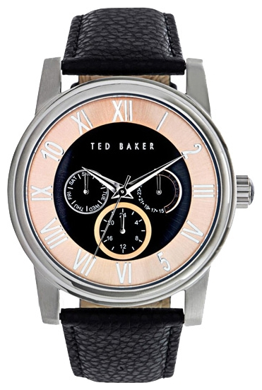Wrist watch Ted Baker ITE1070 for Men - picture, photo, image