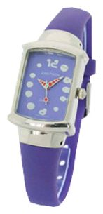 Wrist unisex watch Zaritron FR003-1-sir - picture, photo, image